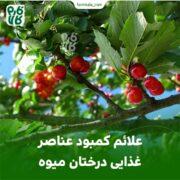 علائم کمبود عناصر غذایی درختان میوه